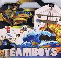 Kniha Teamboys Pirates Stickers!...