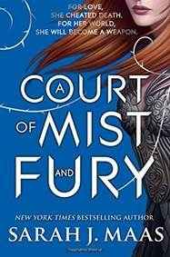 Kniha A Court of Mist and Fury...