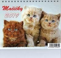 dospievajúce dievčatá mačička
