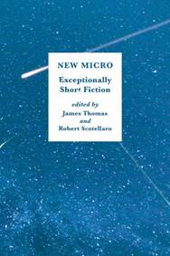 Kniha New Micro Exceptionally Short Fiction...